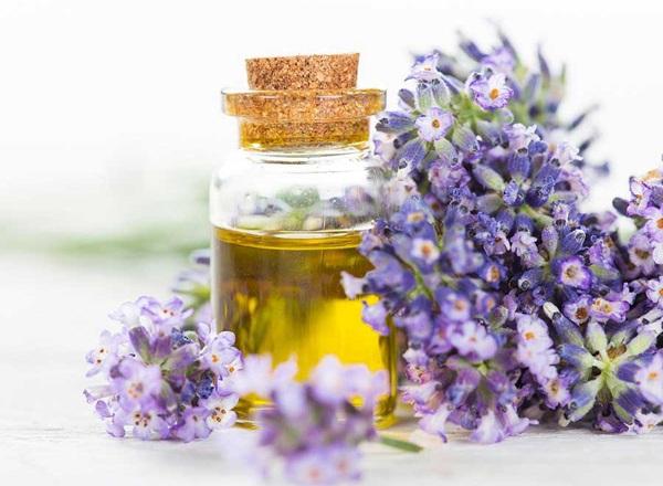 Tuyệt chiêu khử mùi hôi trong phòng ngủ nhanh và hiệu quả nhất