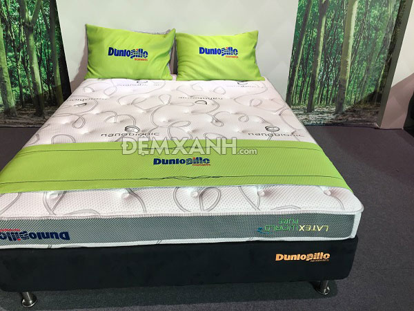 Đại lý bán đệm Dunlopillo giá rẻ tại Huyện Kiến Xương-Thái Bình
