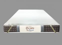 Ga chống thấm Olympia cotton cao cấp mới