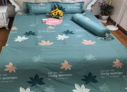 Bộ ga gối chun Olympia chần vải Cotton Hàn 17