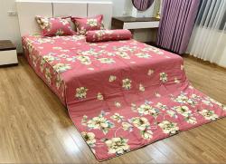 Bộ ga gối chun Olympia chần vải Cotton Hàn 29