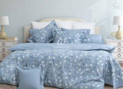 Chăn ga gối Hanvico Blue Sky Cotton T - DL176