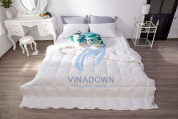 Ruột chăn lông vũ Vinadown mỏng màu trắng