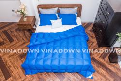 Ruột chăn lông vũ Vinadown mỏng màu xanh