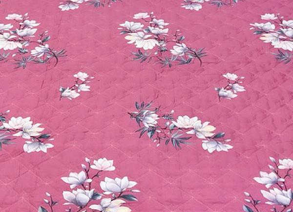 Bộ ga gối chun Olympia chần vải Cotton Hàn 03