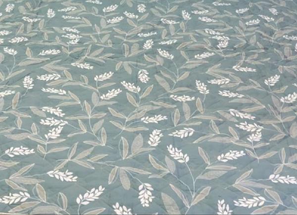 Bộ ga gối chun Olympia chần vải Cotton Hàn 22