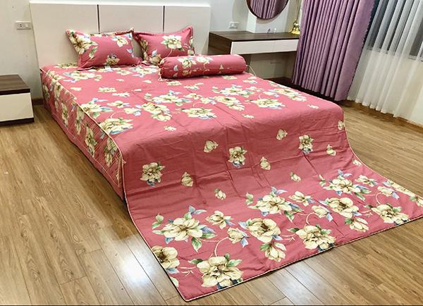 Chăn xuân thu Olympia vải Cotton Hàn 29