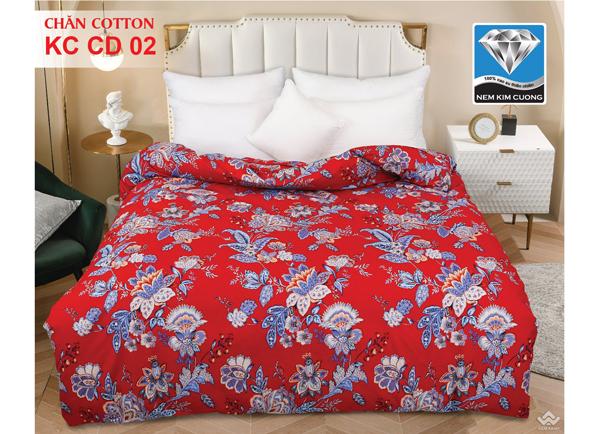 Chăn đông Kim Cương cotton KCCD02